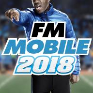 FMM 2018